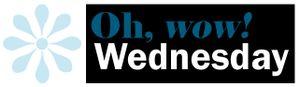 Oh wow wednesday logo