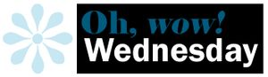 Oh wow wednesday logo