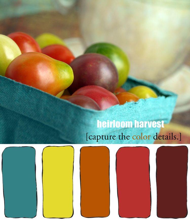 Heirloom harvest color details