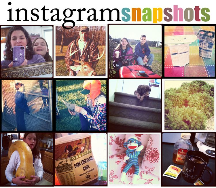 Instagram november19