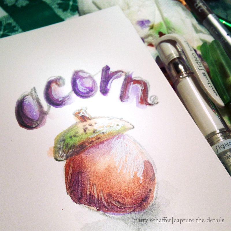 Acorn doodle