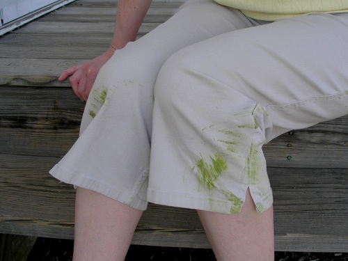 Grass_stains