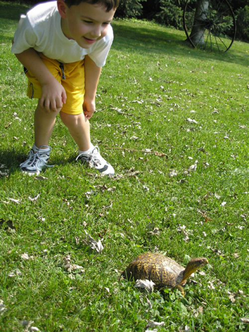 Ben_and_turtle_2