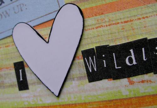 I_love_wildlife_closeup