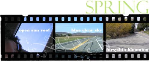 Spring_film_strip_copy